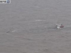 东海海域一货船倾覆 12人获救1人遇难