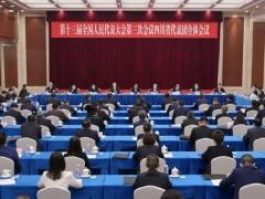 四川代表团举行全体会议 推选彭清华为团长 尹力等为副团长